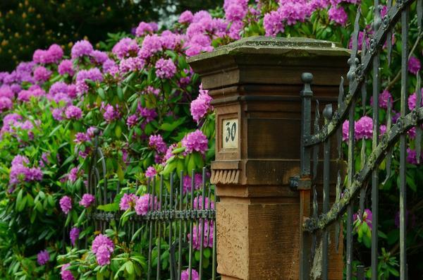 Klasyczne i wytrzymałe ogrodzenie