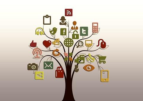 social media - agencja dla firm