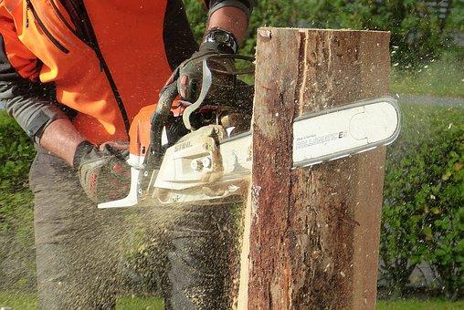 Wycinka drzew stwarzających niebezpieczeństwo