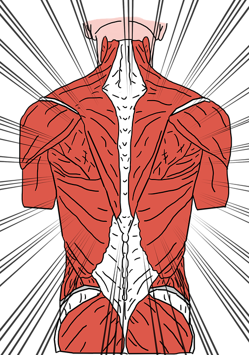 Osteopatia – subtelna odpowiedź na dokuczliwe problemy
