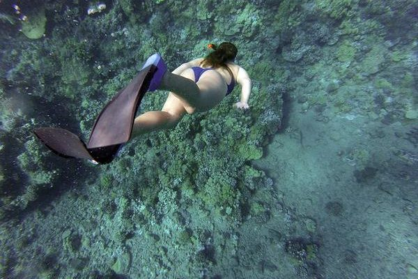 Gdzie ukończyć szkolenie z nurkowania?